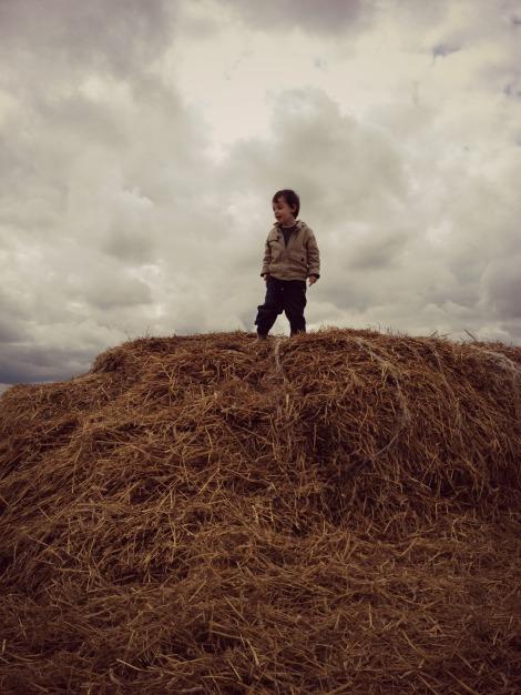 boy at the top of a haystack